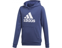 Adidas Sweat C/ Capuz Youth Boys Logo Jr