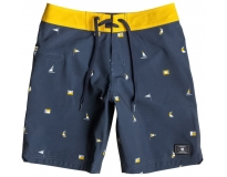 DC Boardshorts Downburst Kids